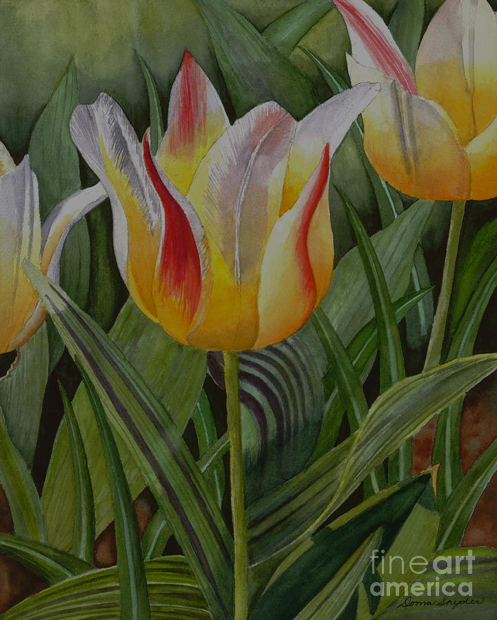 Tulip Painting - Garden Delights by Donna Snyder