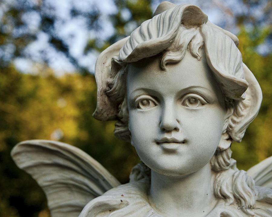 Garden Photograph - Garden Fairy by Christopher Holmes