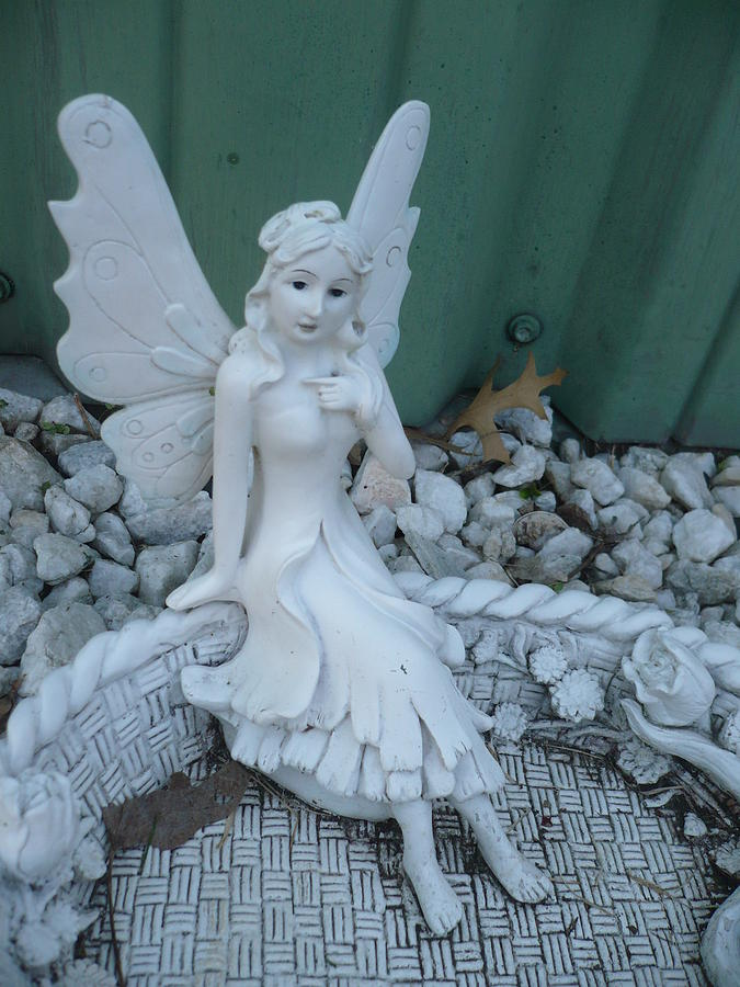 Fairies Photograph - Garden Fairy by Stephen Davis