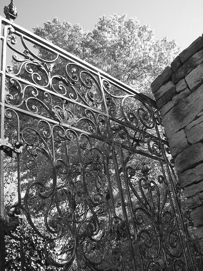 Gate Photograph - Garden Gate by Audrey Venute
