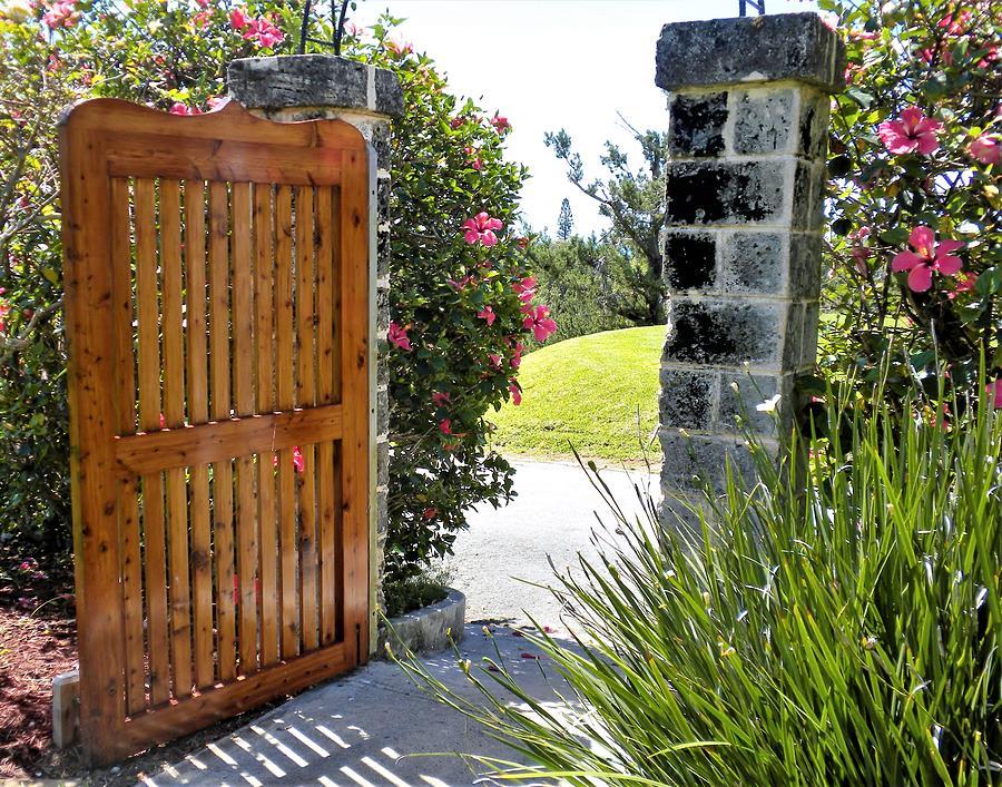Garden Gate by Florence Ferrandino