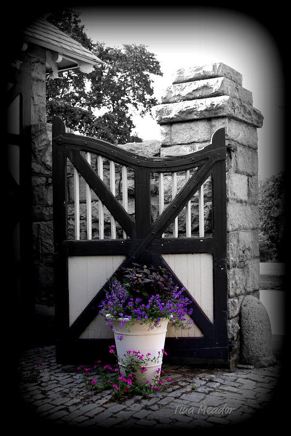 Gate Photograph - Garden Gate by Tina Meador
