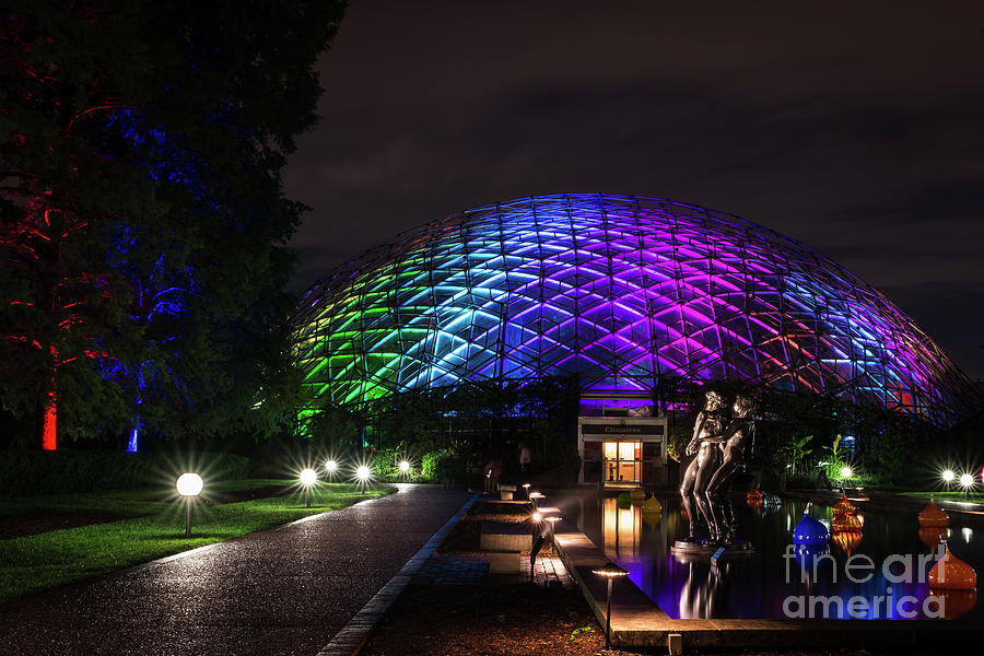 Garden Globe at Night by Andrea Silies