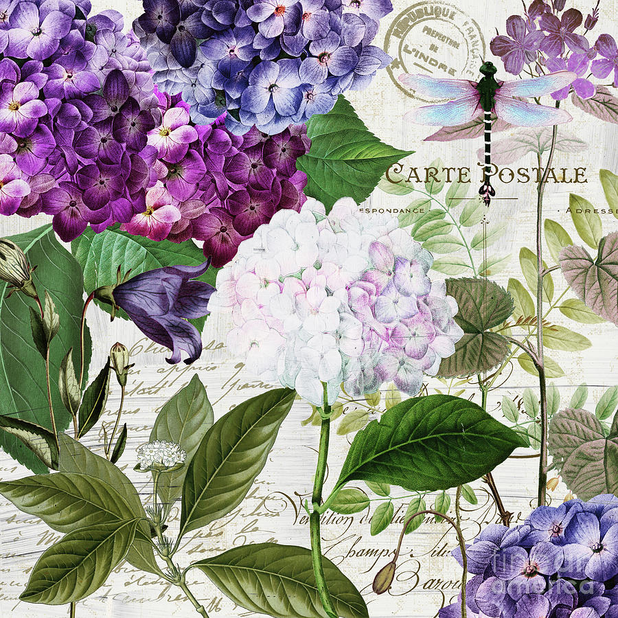 Hydrangea Painting - Garden Glow by Mindy Sommers