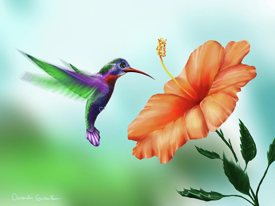 Garden Hummingbird Painting by Amanda Gusack