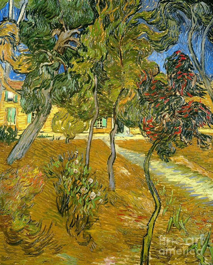 Garden Painting - Garden Of Saint Pauls Hospital by Vincent van Gogh