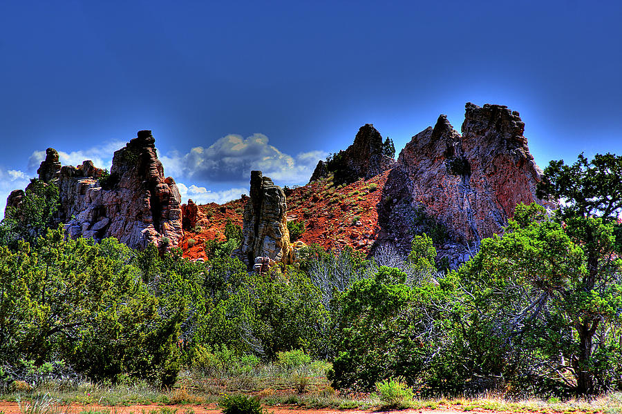 Landscape Photograph - Garden Of The Gods by David Patterson