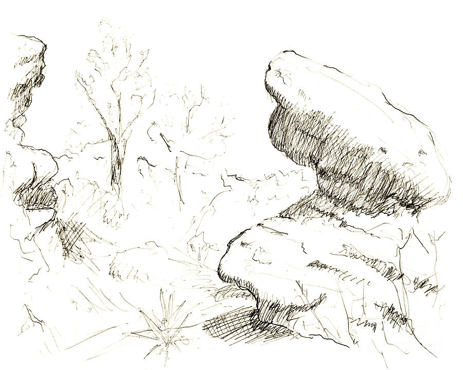 Draw Drawing - Garden Of The Gods Rocks Along The Trail Ink Drawing By Adam Lon by Adam Long