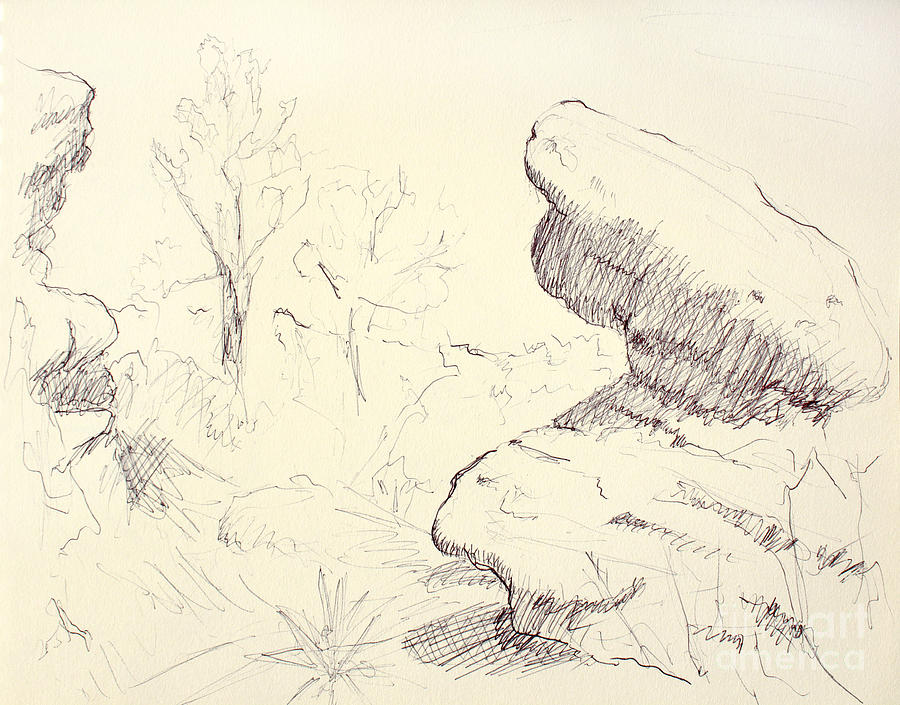 Draw Drawing - Garden Of The Gods Rocks Along The Trail Ink Drawing On Toned Pa by Adam Long