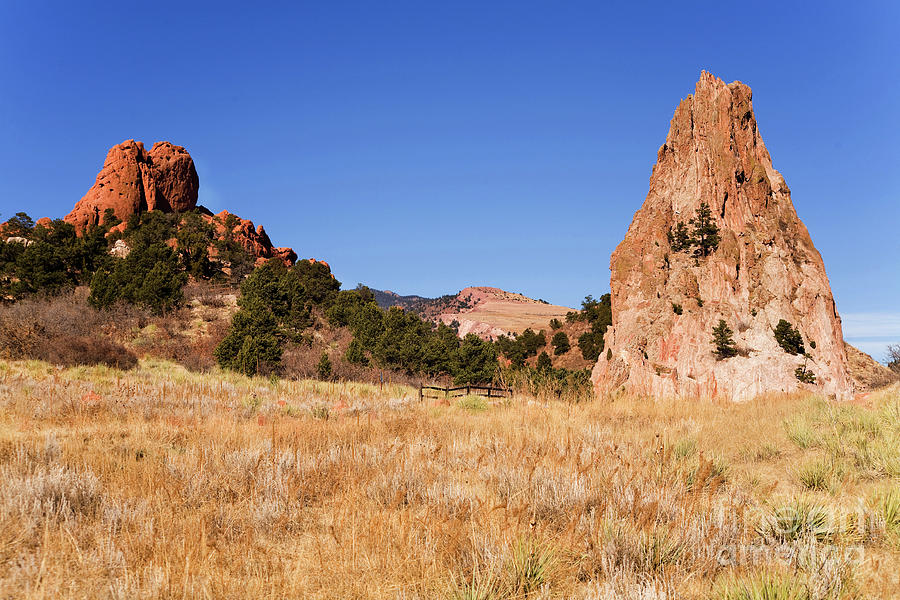Garden Photograph - Garden Of The Gods View by James Jones