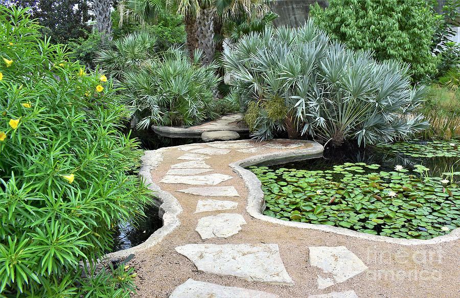 Garden Path  by James Fannin
