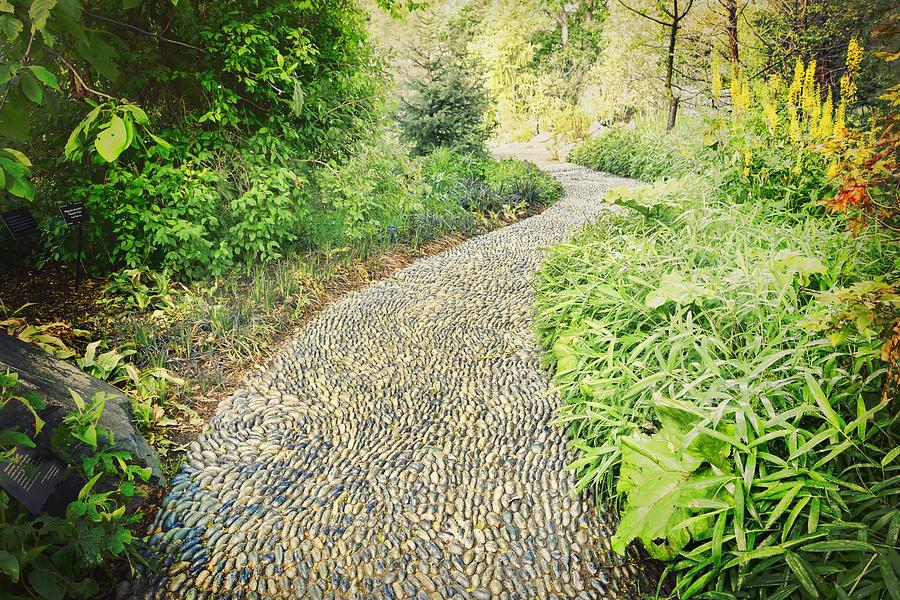 Path Photograph - Garden Path - Photography by Ann Powell
