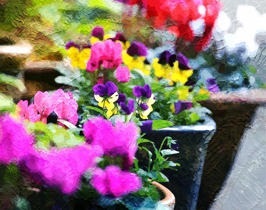Potted Plants Photograph - Garden Plants by Zahra Majid