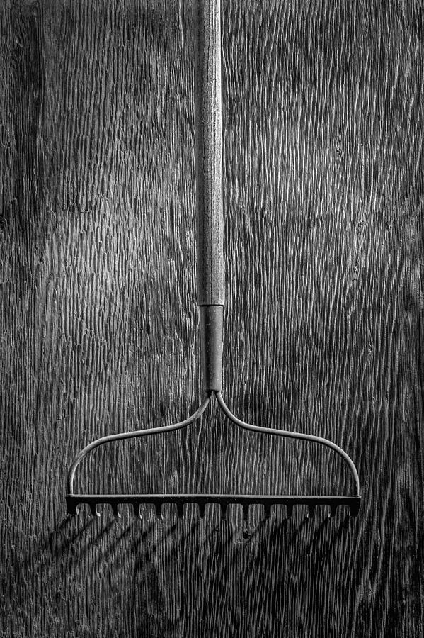 Black Photograph - Garden Rake Down by YoPedro
