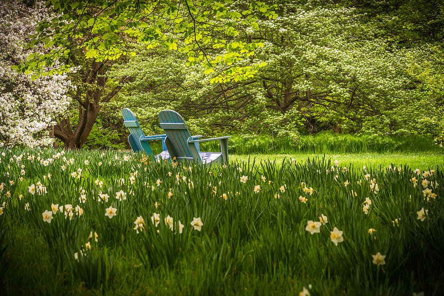 Garden Seats Photograph by Kristopher Schoenleber