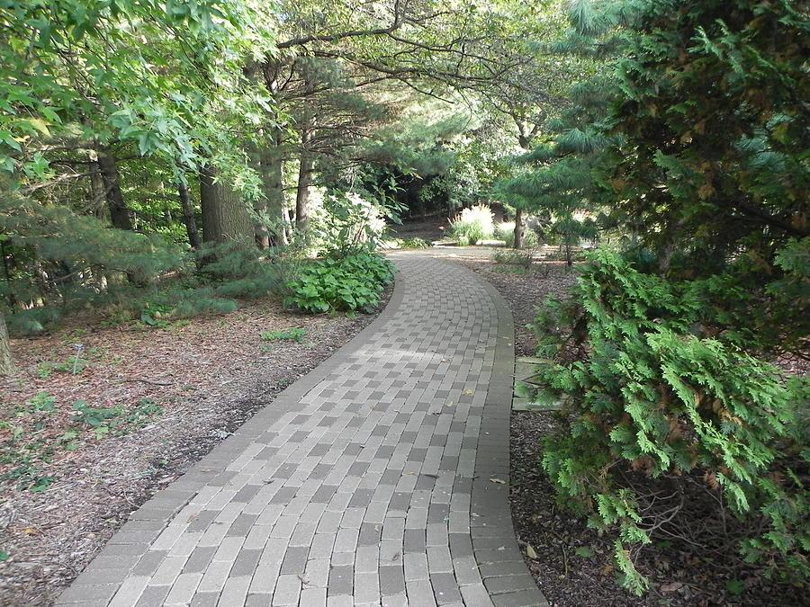 Garden Photograph - Garden Sidewalk by John Parry