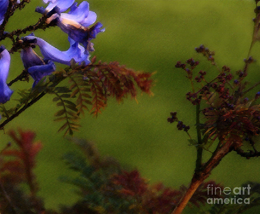 Flowers Photograph - Garden View by Linda Shafer