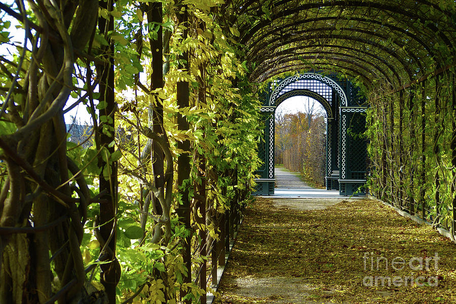 Garden Walkway by Marguerita Tan