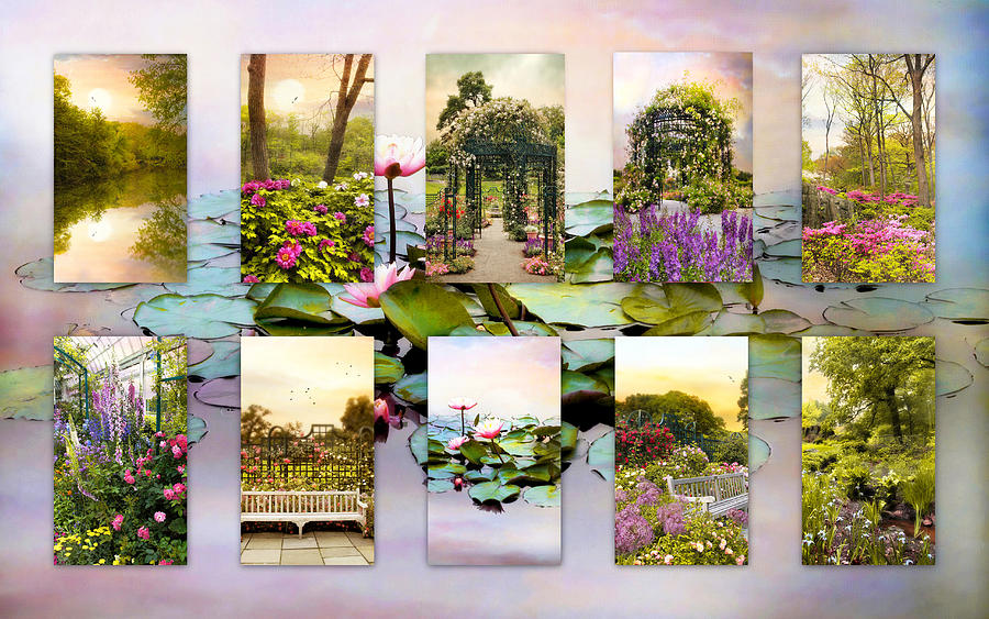 Nature Photograph - Garden Windows Collage by Jessica Jenney