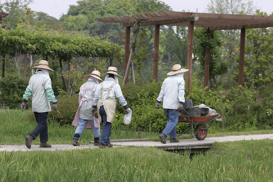 Flower Photograph - Gardeners by Masami Iida