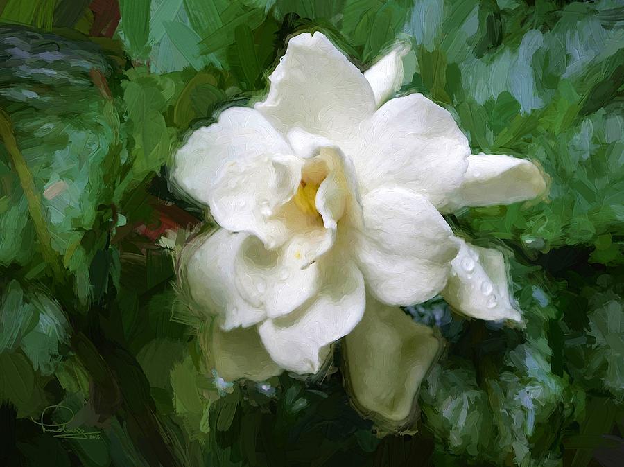 Gardenia Blossom by Ludwig Keck