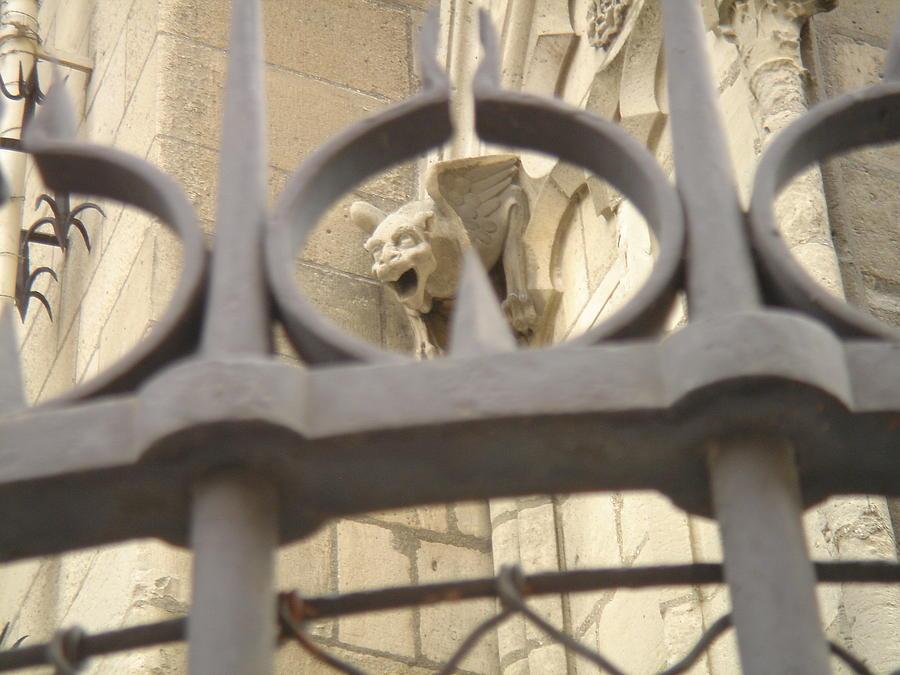 Gargoyle Photograph - Gargoyle On Notre Dame by John Julio