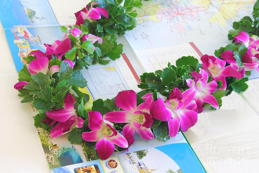 Garland Of Pink Orchids - A Gift From The Travel Agency, Vietnam.. Photograph