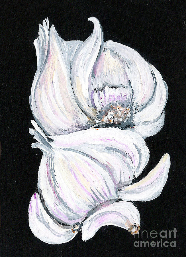 Garlic Painting - Garlic 2 by Elaine Hodges