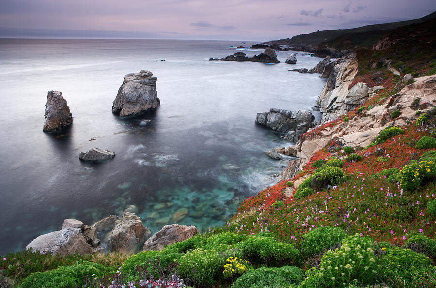 California Photograph - Garrapata Shore by Eric Foltz
