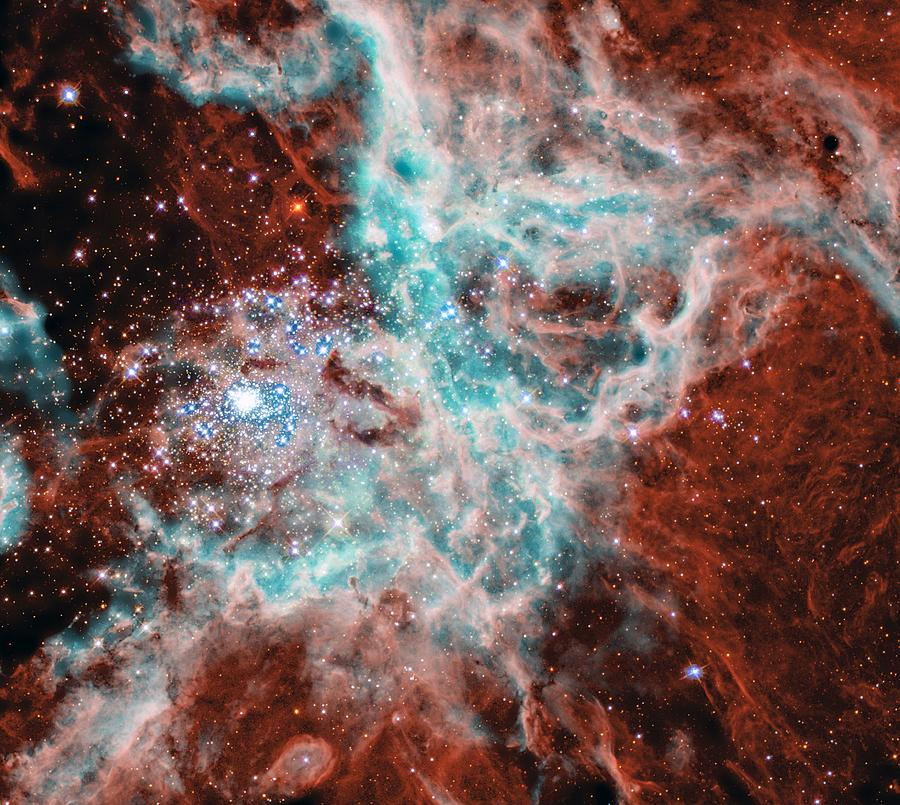 Gas And Dust Where Thousands Of Stars Are Being Born In