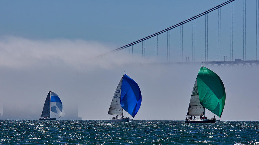 Bay Photograph - Gate Fog And Chutes by Steven Lapkin