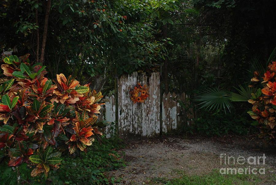 Gate by Jim Goodman