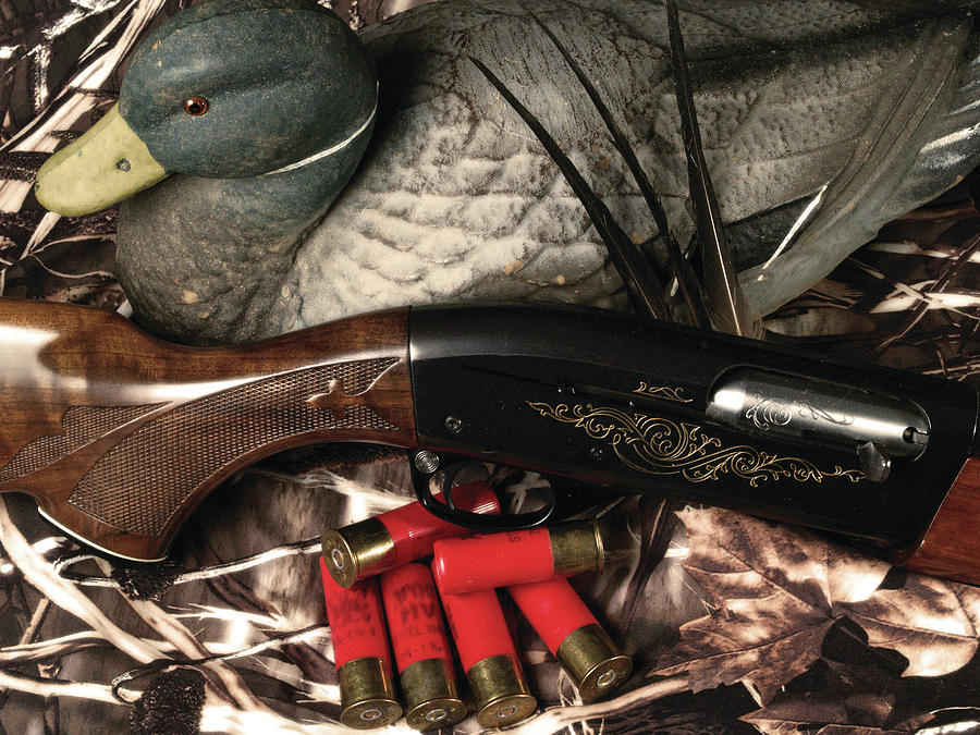 Duck Photograph - Gathered Gear by Brenon Hensley