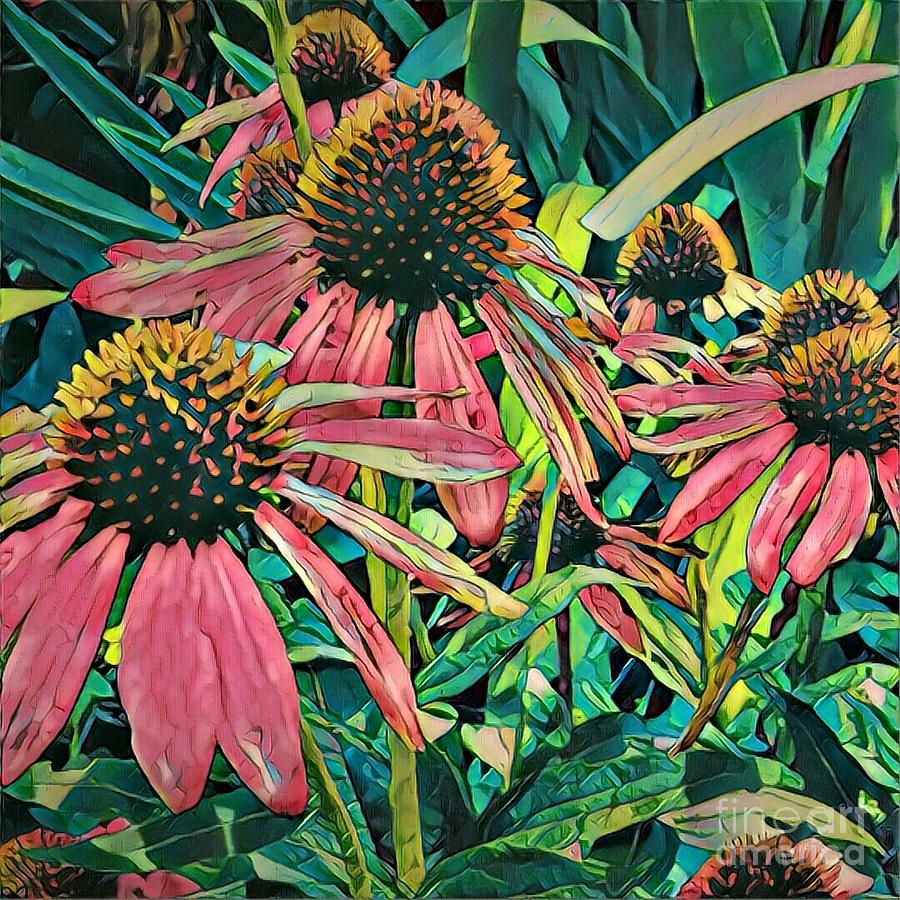 A Gathering of Coneflowers by Diane Miller
