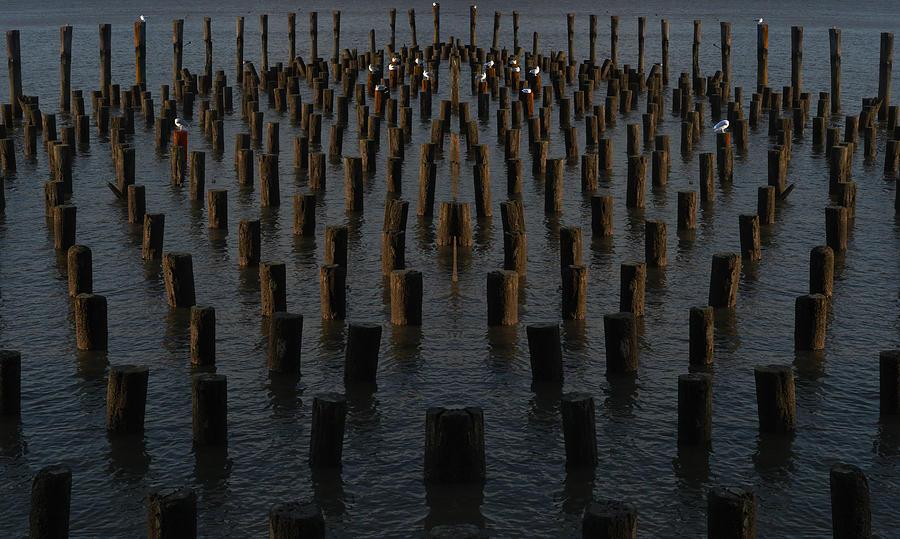 Gathering on the Hudson by Leon deVose
