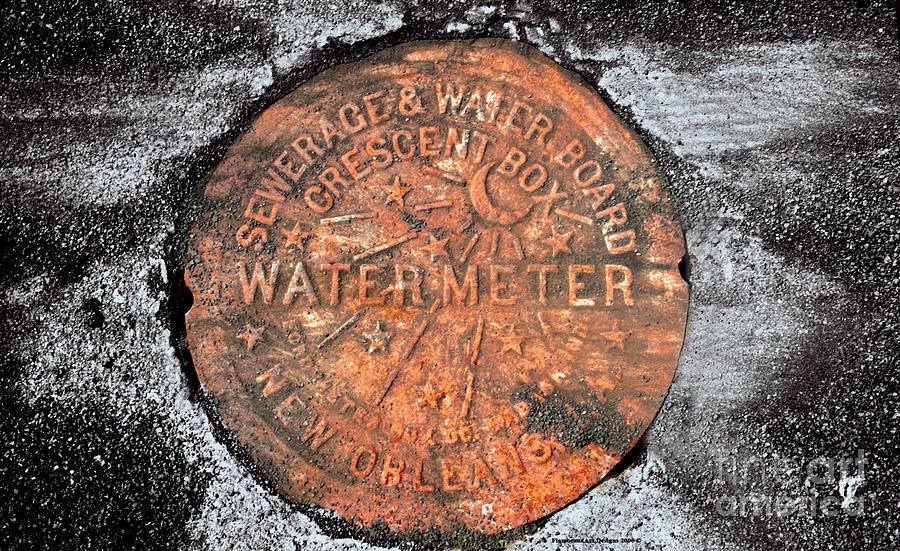 New Orleans Water Meter Cover 9 Months After Katrina Photograph by Pringle Teetor