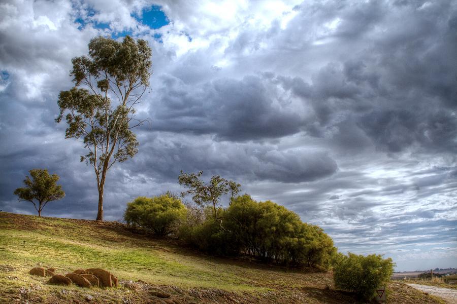 Gathering storm clouds by Jenny Setchell