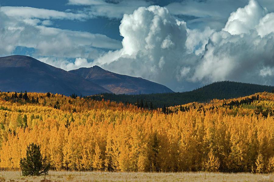 Gathering Storm - Park County CO by Dana Sohr