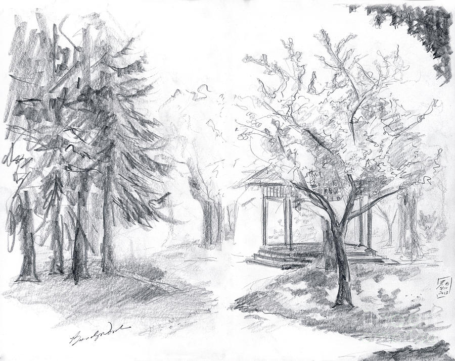 Drawing Drawing - Gazebo by Brandy Woods