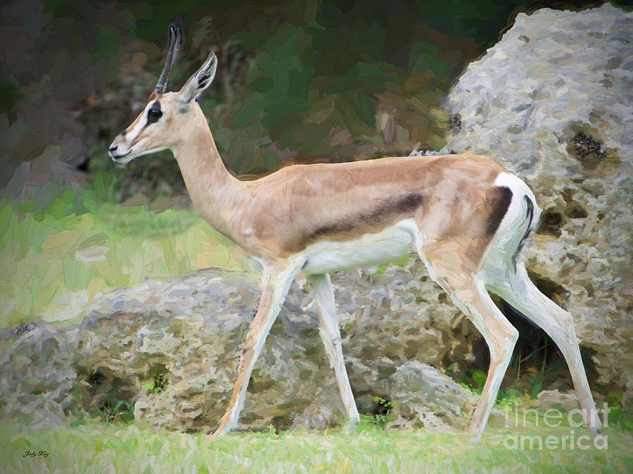 Sell Iphone Online Gazelle