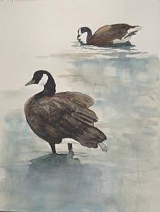 Canadian Geese Painting - Geese 2 by Diane Ziemski