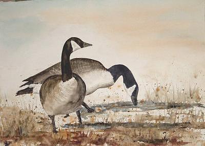 Geese Painting - Geese 4 by Diane Ziemski