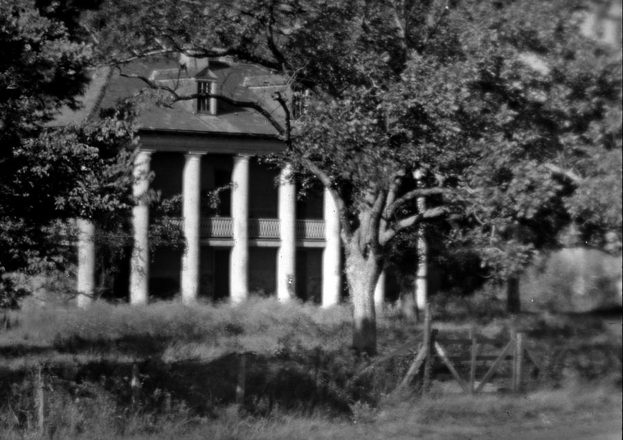 Plantation Photograph - General Beauregards Plantation by Crescent City Collective