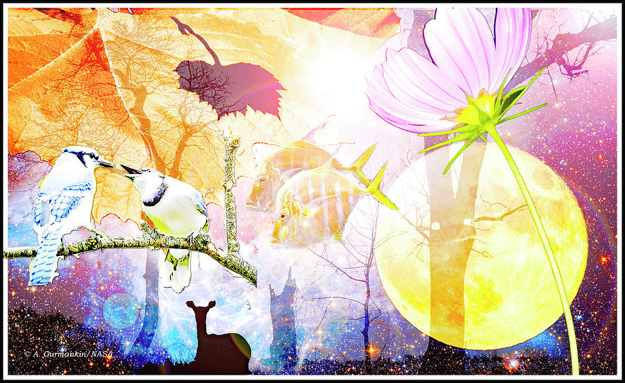 Genesis Digital Art - Genesis Collage by A Gurmankin