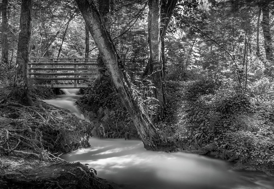 River Photograph - Gentle Flow by Georgia Fowler