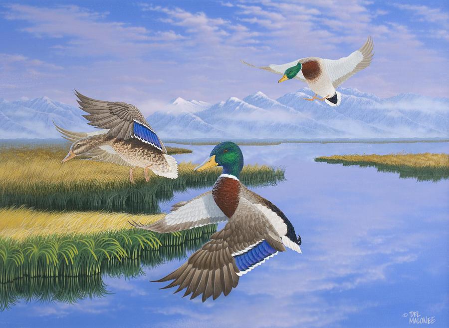 Gentle Landing by Del Malonee