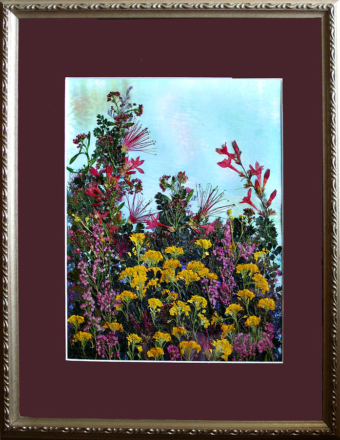 Wildflowers Mixed Media - Genuine Preserved Flowers - Pond by Julie Geiss