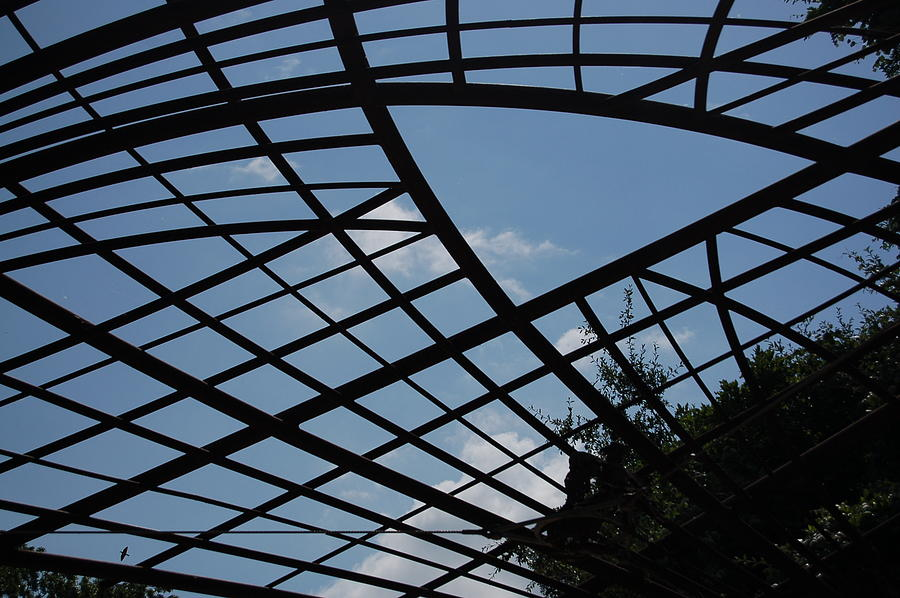 Sky Photograph - Geometry by Siobhan Yost