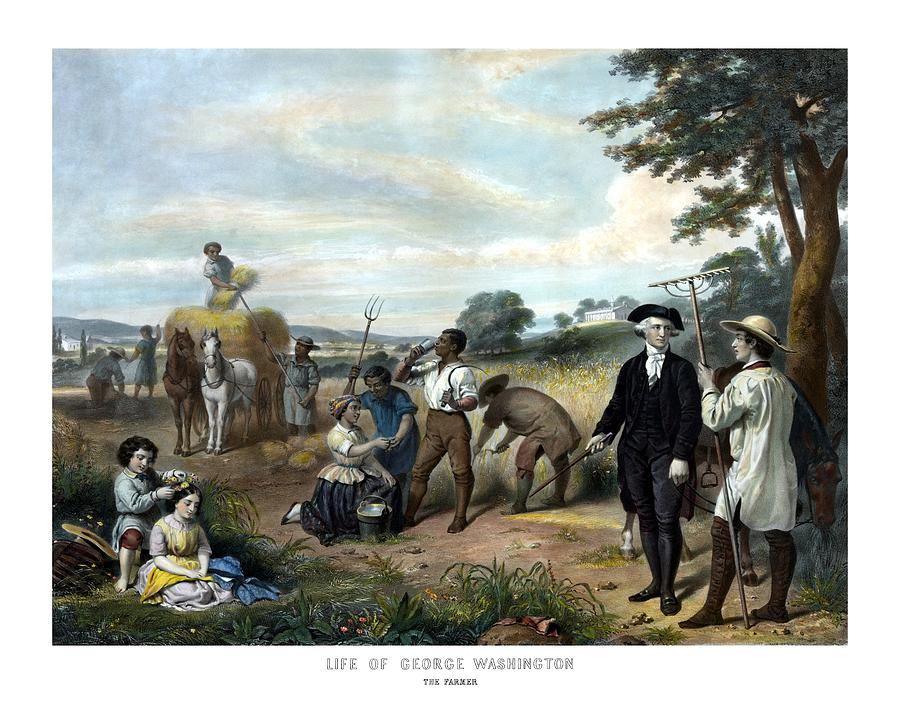 George Washington Painting - George Washington The Farmer by War Is Hell Store