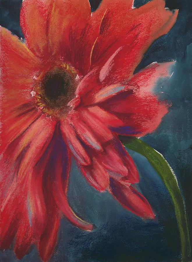 Pastel Pastel - Gerber Daisy 1 by Brandi York